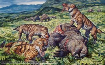 Mammal-like reptiles: Cynognathus (Cynognathus crateronotus) and Placerias (dicynodont therapsid). Cynognathus is a 3 foot long predator that lived during the early Triassic period. It was one of the more mammal-like of the mammal-like reptiles, a member of a grouping called Eucynodontia. Triassiac age of Africa.